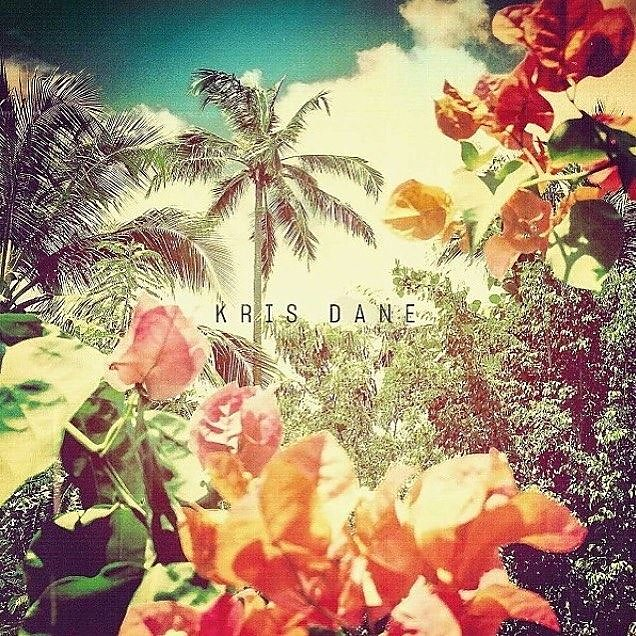Kris Dane album U.N.S.U.I.